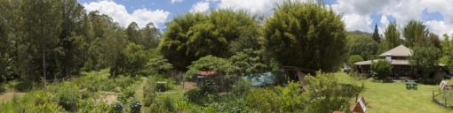 Djanbung Gardens is a living classroom of forest, gardens, animals, buildings and technology as integrated permaculture design