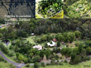 Aerial photos of Djanbung Gardens 1993-2014