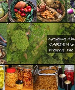 Growing Abundance, garden to table and preserving the harvest