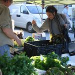 Selecting fresh produce from permaculture grower at Nimbin Farmers Market