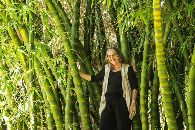 Robyn Francis in Buddha-belly bamboo clump
