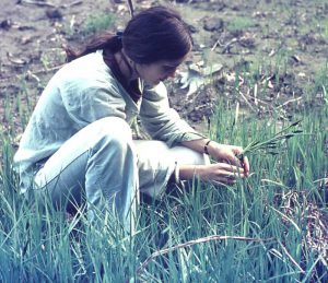 Robyn Francis, 1975, foraging in Bavaria