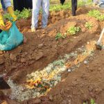 Burying food waste to decompose and provide organic matter in the soil on the rooftop