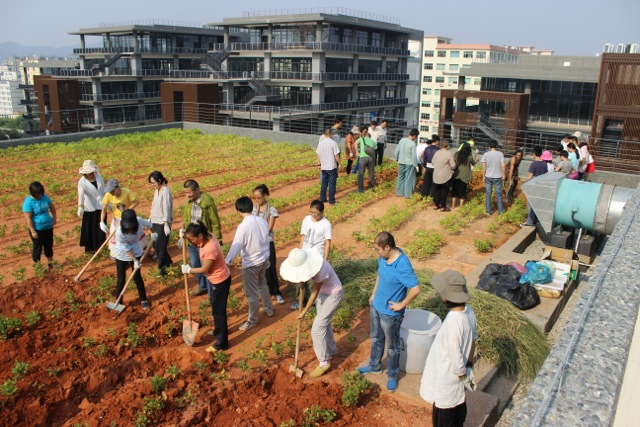 Permaculture in China-2014 – Permaculture College Australia