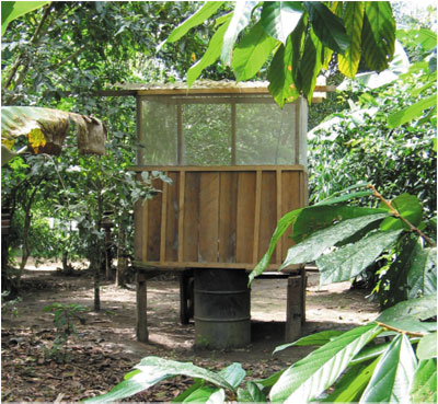 Composting toilet made with recycled drum in a village in the Amazon