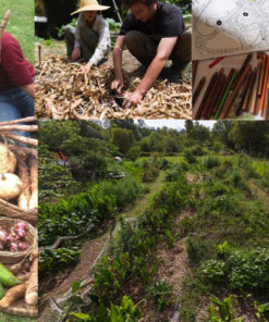 PDC: Permaculture Design Courses